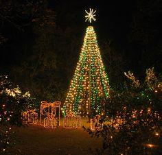 CHRISTMAS LIGHTS AT BELLINGRATH, Mobile Alabama