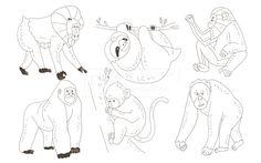 SPAI148, 프리진, 일러스트, SPAI148a, 동물, 에프지아이, 라인, 원숭이, 나무늘보, 나무, 나뭇잎, 오랑우탄, 침팬지, 고릴라, 맨드릴, 일러스트, illust, illustration #유토이미지 #프리진 #utoimage #freegine 19952205