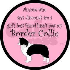 Dog and Border Collie Stuff