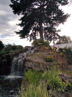 Vesiputous kivipuistossa Kew Gardenissa.