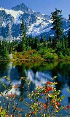 Alpi Italy