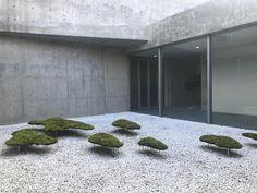 338 Likes, 16 Comments - Tada Aoza Modern Japanese Garden, Japanese Garden Landscape, Mini Zen Garden, Dry Garden, Modern Garden Design, Japanese Gardens, Garden Plants, Landscape Architecture, Landscape Design
