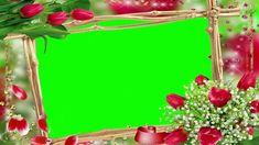 Wedding Background Video, green screen, flower frame, chroma key - 811 Frame Background, Video Background, Wedding Background, Frame Download, Download Video, Wedding Videos, Wedding Album, Green Screen Footage, Green Screen Backgrounds