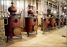Tsipouro: A spirit of experience from generation to generation 14th Century, Wines, Greece, Old Things, Spirit, Medieval, Cocktail, Lifestyle, Food