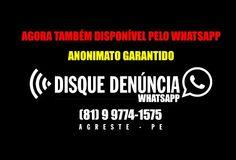 Infratores temei: WhatsApp do Disque-Denúncia já está funcionando http://www.jornaldecaruaru.com.br/2015/12/infratores-temei-whatsapp-do-disque-denuncia-ja-esta-funcionando/