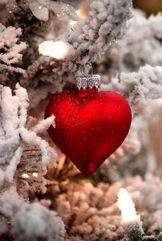 christmas greetings frohe weihnachten s - Christmas Hearts, Christmas Mood, Noel Christmas, Christmas Greetings, Christmas Bulbs, Christmas Decorations, Christmas Sayings, Winter Christmas Scenes, Christmas Aesthetic