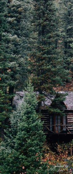 Cabin in the woods has its own charm that most of us yearns for. Cabins In The Woods, House In The Woods, Cottage In The Woods, Cabin Homes, Log Homes, Cabana, Forest Cabin, Mountain Homes, Mountain Cabins
