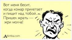 Аткрытка №403028: Вот меня бесит,   когда комар прилетает   и пищит над тобой….  Пришел жрать —   жри молча! - atkritka.com
