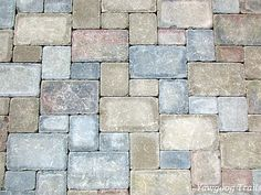 Uncarved bricks in the Memorial Brick Walkway at Camp #Yawgoog.  Image by David R. Brierley.
