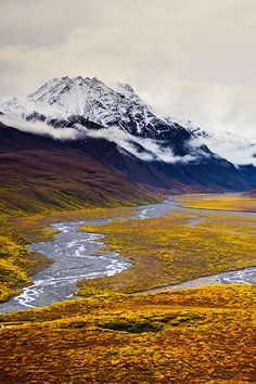 Denali National Park, Alaska, North America
