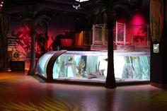 Sea Life Kansas City Aquarium: Impressions