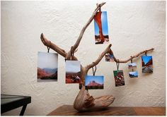 what a good idea...if you can find a branch that stands like that