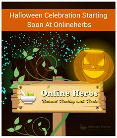 Halloween Celebration Starting Soon At Onlineherbs: http://blog.onlineherbs.com/make-your-halloween-healthy-and-spooky-with-onlineherbs/?utm_source=pinterest&utm_medium=blog-make-your-halloween-healthy-and-spooky-with-onlineherbs&utm_term=tricks%20and%20treats.&utm_campaign=october-smo