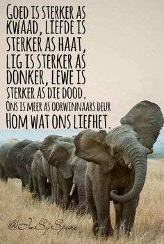 Love Me Quotes, Strong Quotes, Quotes About God, Happy Quotes, Prayer Verses, Scripture Verses, Bible Verses Quotes, Wisdom Quotes, Afrikaanse Quotes