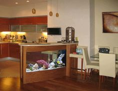 room-interior-dividers-aquariums-glass-fish-tanks