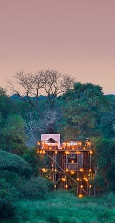 The Tinyeleti Treehouse, Lion Sands Private Game Reserve, Sabi Sand South Africa