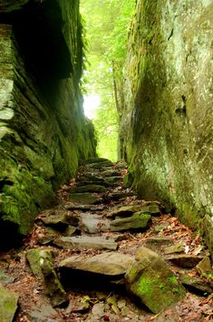 Hidden stairway in McConnell's Mill State Park up near Slippery Rock, PA.