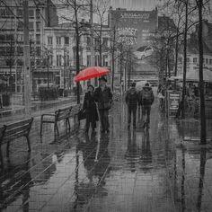 rain16.gif (GIF Image, 500×500 pixels)