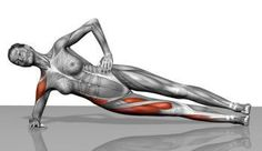 Side planks help strengthen the obliques and deep stabilizers of the low back, such as the quadratus lumborum and multifidus.