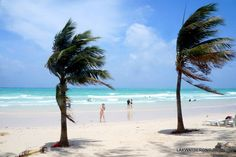 VISITING BORACAY ISLAND ON A STORMY WEATHER – lakwatserongdoctor Boracay Island, Cheap Web Hosting, Weather, Beach, Outdoor, Outdoors, The Beach, Beaches, Outdoor Games