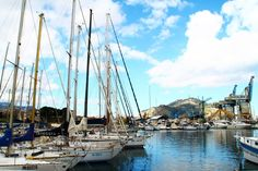 Palermo, Sicily, Sailing Ships, San Francisco Skyline, Boat, Photo And Video, Pictures, Travel, Watercolor