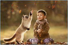 Кошка  #фото #кошки #кошка #кот #Россия #Серпухов #Тула #Москва #СПБ #осень #год #мир #дети #ребенок #котенок #Самара #Хабаровск #Добро #Екатеринбург #animals #cats #cat #animal #kids #kid #russia #moskow #kitty #pet #pets