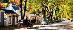 Arrowtown, New Zealand. It's not for everyone, but I thought it was cool. It's a cute little town with a lot of history, a few pubs, and some shops. If you want to take it easy and go for a little wander instead of a hike, this place is good.