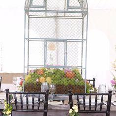 Simple elegance on #mossmountainfarm #g2b15 #americangrown #stargazerbarn #pallensharethebounty #joy #floral