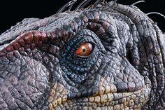 Jurassic Park 3 male Velociraptor animatronic insert head
