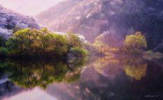 Coréia do Sul paisagens refletidas (7)
