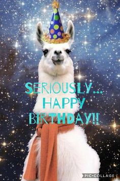 birthday quotes 50 hilarious happy birthday memes the love quotes looking for love quotes top rated quotes magazine repository we provide you with top quotes from around the world - The world's most private search engine Happy Birthday Llama, Happy Birthday Girls, Happy Birthday Pictures, Happy Birthday Quotes, Happy Birthday Greetings, Birthday Messages, Birthday Memes, Birthday Humorous, Birthday Sayings