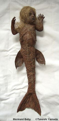 Mermaid Baby (by Museum of World Wonders (Dr. Takeshi Yamada))