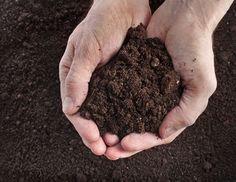 Ako vylepšiť pôdu v okrasnej kvetinovej záhrade