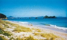 Hahei - favorite beach on the Coromandel