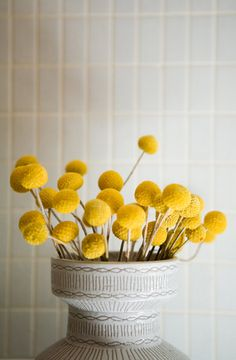 """These flowers are called """"Billy Buds,"""" and they dry just like this and lastindefinitely. They're like bright little suns. I am all about low-maintenanceflowers like these and orchids."""