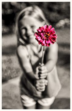 Gift of Color by Jeff Clow. Love the focus. One Color, Color Change, Color Pop, My Flower, Flower Power, Flowers, Different Points Of View, Life Is Precious, Black And White Pictures