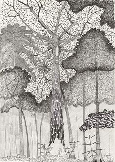 Francis Hallé, Moabi, Baillonella toxisperma, Langoué, Gabon, 2012Crayon et encre sur papier, 42 × 30 cm.Collection de l'artiste.