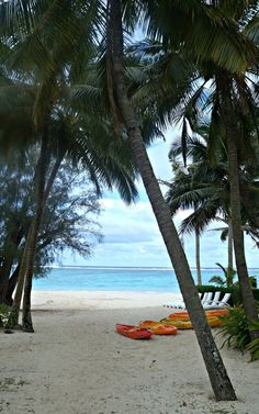 A Cook Islands Retreat: Loved My Beach Front Bungalow at Palm Grove Resort! Top Travel Destinations, Places To Travel, Places To Visit, Rarotonga Cook Islands, Turquoise Water, White Sand Beach, Vacation Places, Kayaking, Palm