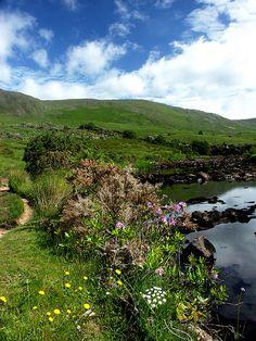 Ireland - County Mayo, Erriff River