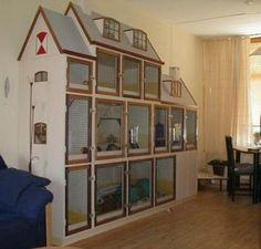 Pet Rat Cages, Ferret Cage, Pet Ferret, Pet Cage, Bunny Cages, Rabbit Cages, House Rabbit, Indoor Bunny House, Indoor Rabbit
