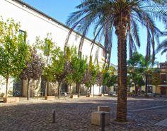 Córdoba - Plaza de las Cañas.