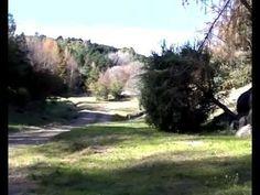 El Sibarita Tv / Prog 02 / Bosque Douglas (Villa Berna) - YouTube
