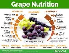 health facts Grape is one of the most identifiable plants in the world. Read on to learn why it has been a staple of human health and happiness for centuries. Fruit Nutrition, Health And Nutrition, Grape Nutrition Facts, Subway Nutrition, Nutrition Jobs, Protein Nutrition, Nutrition Tracker, Nutrition Chart, Health Vitamins