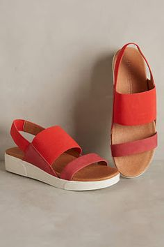 #anthrofave New Arrival Shoes