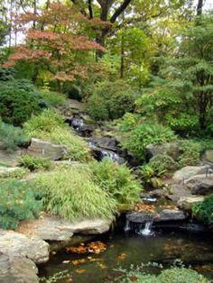 Rock garden ideas.