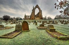 Bolton Abbey, Yorkshire Dales. One of my favourite places.Beautiful with a stunning walk.Perfect day out
