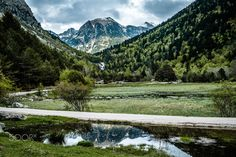 Vall de boi Espana - green - Vall de boi Espana - green