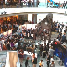 Mammoth in hong kong! Only at the IFC