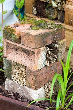 Arranging a few old bricks on top of each other makes a simple insect house within minutes. The voids in each layer can be filled with old stems, twigs and other prunings collected from the garden. Bug hotel made from bricks and bamboo - © Lee Avison/GAP Photos