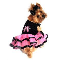 Black Velvet with Embroidered Ballerina Slipper Dress